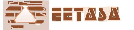 fetasa Ingeniería logo